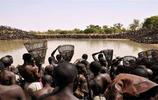 非洲一個湖裡有數萬條魚,5分鐘之後一條都不剩,場面一度失控