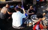 8月來青島吃海鮮 南方梭子蟹肥了 售價30元一斤 紅島蛤蜊10元2斤