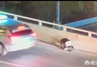 17歲男孩被母親批評跳橋遇難,這到底是誰的錯?