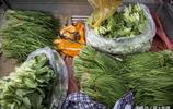 農村80歲老人騎車進城賣菜,一早只賣1塊錢,不夠吃飯