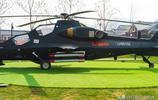 蒙陰縣岱崮鎮的崮鄉公園裡陳列了很多武器模型,軍事迷可以去看看