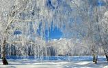 俄羅斯冬季印象:除了寒冷,還有美不勝收的雪景