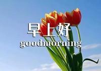 新的一天,為自己的夢想添磚加瓦,為自己的生活奮力創造 早安