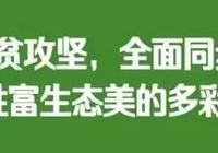 玉屏迅速落實陳昌旭書記陳晏市長批示精神