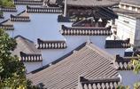 堪比烏鎮的上海千年古鎮,風景醉人,卻冷清的叫人心疼...