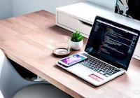 為什麼一些大公司的程序員,寧願自己去創業也不願意去小公司做項目總監?