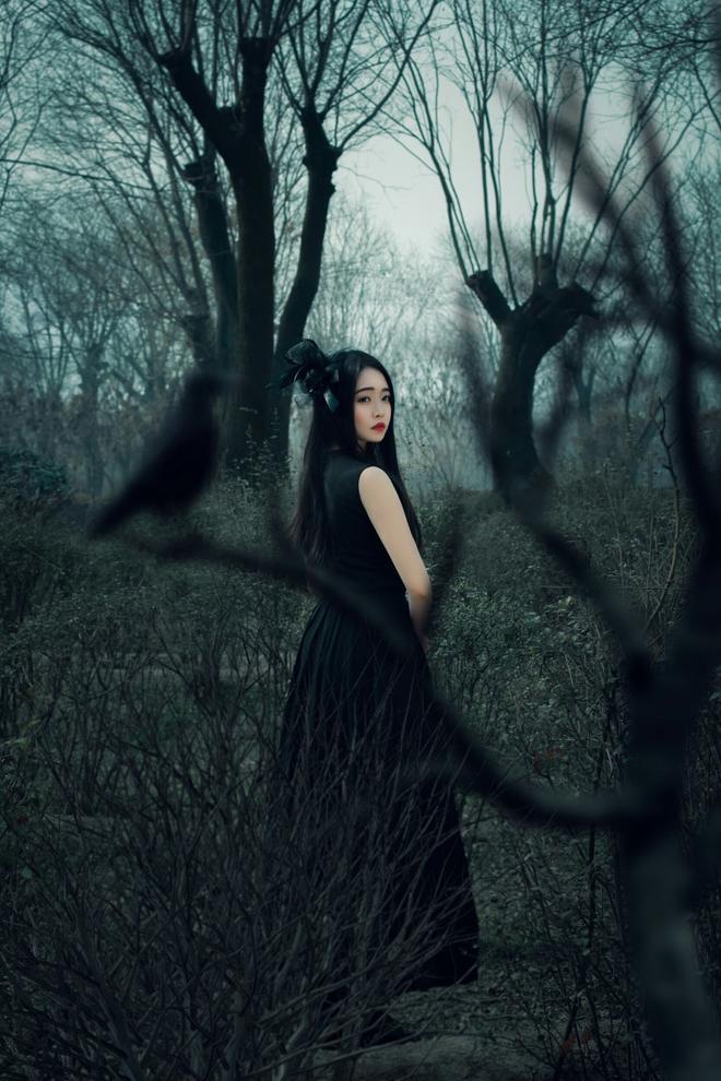 圖蟲風光攝影:暗夜精靈