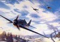 """德軍的""""屠夫之鳥""""——FW-190"""