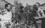 溥儀被特赦後照片:與杜聿明參觀六和塔,跟馮玉祥的部下舉杯歡宴
