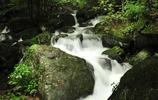 自然風景圖集:杭州天目山