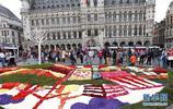 布魯塞爾舉辦花藝展