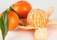 吃橘子的好處 不看不知道橘子竟有這些功效
