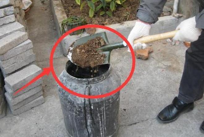 養花自制花肥傳統的方法早已過時,現在流行這4種,你肯定用得上