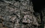 圖蟲風光攝影:滿城盡帶黃金甲