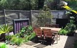 兩款庭院案例:庭院花園的用色也可以這麼大膽,色彩美翻了花園