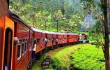 斯里蘭卡——茶園火車