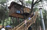 """農村70歲老人在樹上建房,還裝空調,村裡人都說他是不是""""傻"""""""
