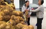 山東農民會賺錢 從廣西拉一車芋頭到臨汾便宜賣 一早上賺了二千元