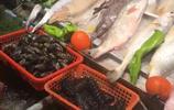 在洛陽海鮮店吃了6個海鮮硬菜,一不留神消費300多元也值啦!