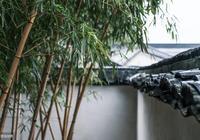 農村庭院種植竹子很漂亮,竹子根生長太旺盛,該怎麼去除竹子根
