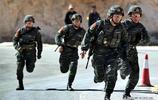 反恐中堅力量,武警雪豹突擊隊