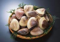 炒花蛤、煮花蛤、蒸花蛤、烤花蛤,你喜歡哪一個?