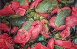 攝影圖集:秋風起,蟹腳癢,在合適的季節去吃越南螃蟹腳