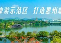 不輸香港、上海、重慶,惠州的夜景簡直太震撼了!