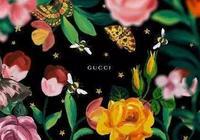 Gucci的包你瞭解多少?!