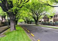 留學新西蘭土木工程專業