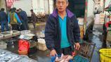 """紅頭魚""""白菜價""""10元4斤 秋季青島海鮮大豐收 市民成筐購買回家"""