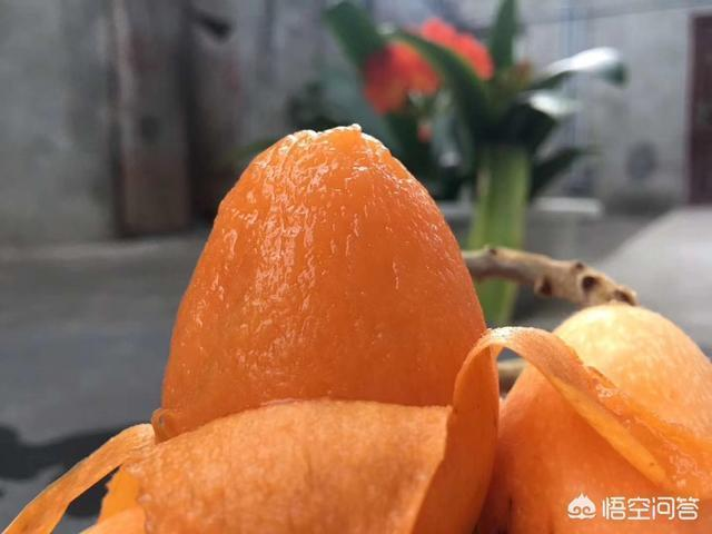 5月吃枇杷,枇杷除了鮮食,還可以怎麼吃?