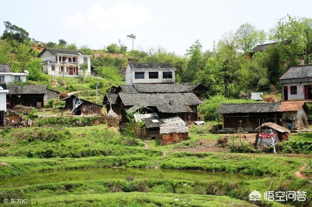 現在辭職回農村做三農自媒體,還有機會嗎?
