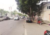 惠州老城區歷史上那些以行業命名的街道