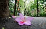 中國廣州——越秀公園