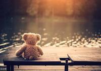 我擁有的,都是僥倖;我失去的,都是人生