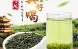 特級明前綠茶!最好喝的綠茶茶葉排行榜!