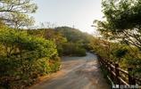 """圖看大連:椒金山山體公園,市區內的""""森林氧吧""""隨拍美圖欣賞"""