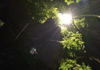 金城秋雨綿綿