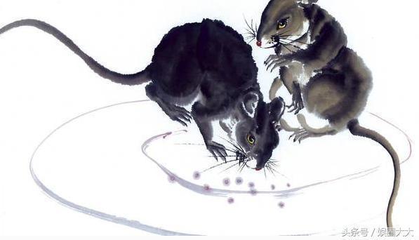 這幾個月出生的屬鼠人,命中受菩薩庇佑,有你嗎?