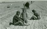 民國老照片:1940年江蘇徐州徐塘莊耕作