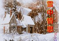 原創散文:雪中情思