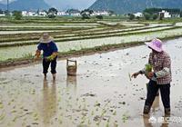 農村的土地越來越少,種地越來越不划算,未來農民的出路在哪裡?