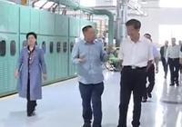 """李華棟到武寧開展""""降成本 優環境""""專題調"""