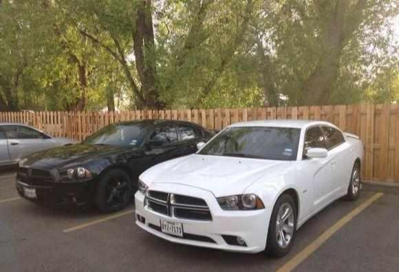 原來白色車與黑色車的差距竟有這麼大,我已經吃虧了!