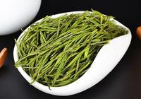 安吉白茶到底是白茶還是綠茶?