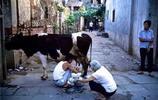 1983年的全景生活老照片
