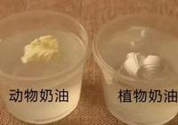 植物奶油和動物奶油的區別是什麼?