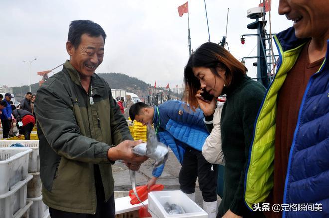 """青島漁港碼頭 船老大自已都""""稀罕""""的海鮮 一斤55 百元能買兩條"""