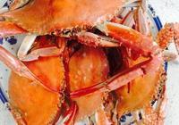 梭子蟹公的好還是母的好 吃梭子蟹的最佳時間